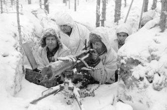 Финские союзники Германии