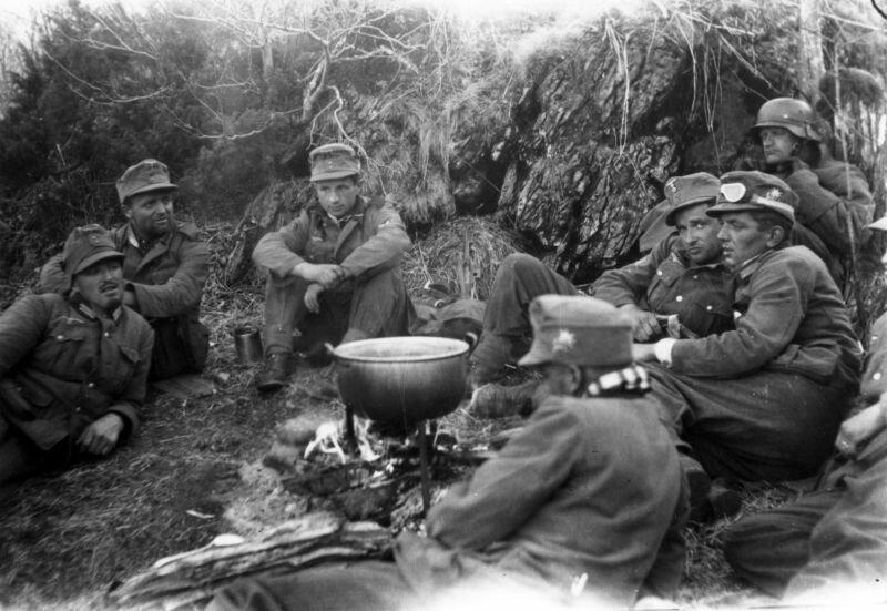 Горные егеря 2-й дивизии